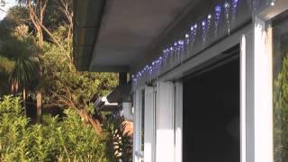 X-mas Lights - Passion Fruit - Bulgarian KWh Meter