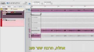 Record Micro Tutorial 8 With Hebrew Subtitles