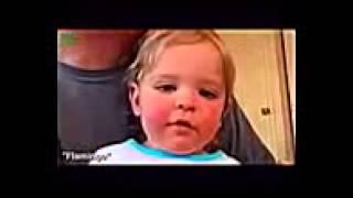 Funny Baby Videos Best Funny Video   YouTube   Funny Baby