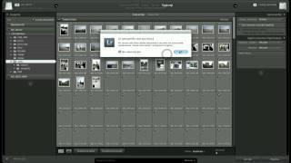 Tutorial Lightroom Italiano - Importiamo Le Immagini - Parte Prima - Video 09.mov