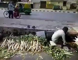 random funny video 1