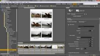 Criar Um Portfolio Interactivo - Adobe Bridge Cs6 - Tutorial Em Português
