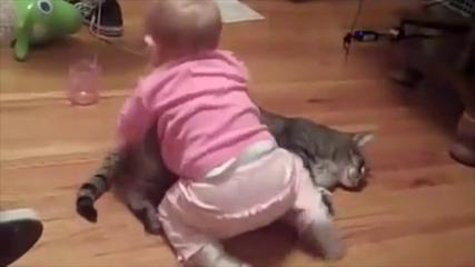 Funny Baby Videos Laughing Compilation