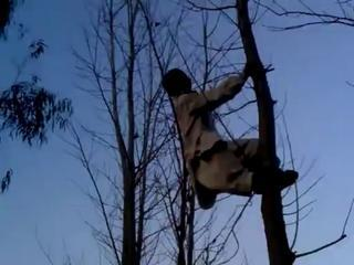 Pathan Jump From Long Tree Very Very Funny