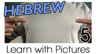 Learn Hebrew Vocabulary With Pictures - All Parts Of The Body