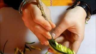 Intaglio Thailandese , Foglia Thai Video Tutorial .
