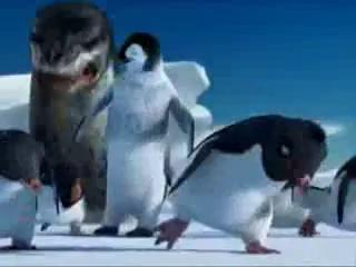 Funny Punjabi Clips Penguins Talking Funny In Punjabi Totay Best Quality - YouTube