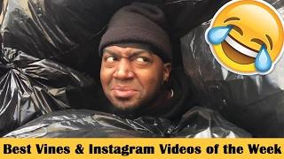 Best Vines & Instagram Videos February 2017 Week 3 | Funny Beyond The Vine Compilation