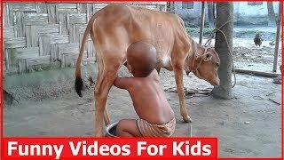 Very Funny Video Clips |Funny Videos For Kids |All In One Tv bd