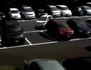 Whatsapp Funny Video   Too Much   Whats A Parking Style