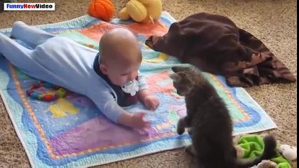 Funny Videos Of Cats And Babies Compilation 2015