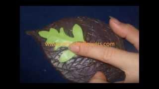 Thai Polymer Clay Flower Cosmo Tutorial / Polymer Clay / Sugar Craft / Cake Decoration