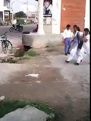 funny clip (3)