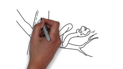 AMAZING FUNNY DIRTY DRAWING