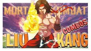 Ultimate LIU KANG Combos in Mortal Kombat 11 | LIU KANG Combo Guide | Beginner Tutorial