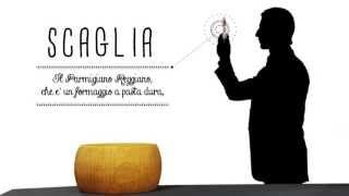 Parmigiano Reggiano  Tutorial Best Italian Quality Food&Wine