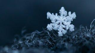 How to photograph SNOWFLAKES in winter - Tutorial | Jaworskyj