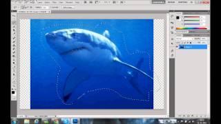 Photoshop Tutorial: Content Aware Effekt (Dansk)