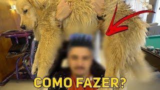FIZEMOS O CORTE DE CABELO BLINDADO EM CASA - TUTORIAL