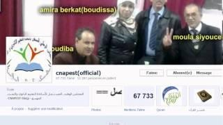 Facebook Auto Like Page 2014