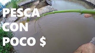 PESCA CON POCO DINERO + TUTORIAL (Caña de bambú + Mini kit de pesca)