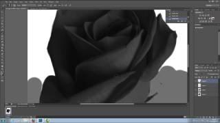 Popartrose-tutorial