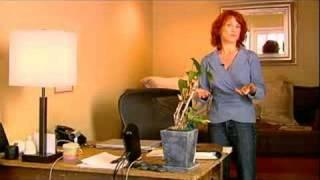 Home Office Feng Shui Tips : Feng Shui Seat Arrangement Tips