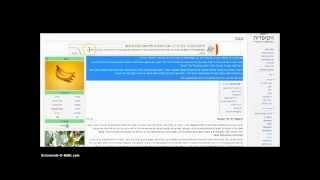 מדריך Google Docs Or Drive