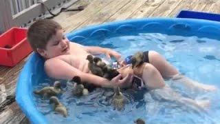 ►Funny And Cute Animals Videos Compilation 2016 [HD] #8 - Cute VN