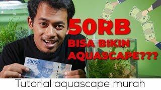 Aquascape budget anak kosan ! (tutorial aquascape mini untuk pemula) pojok tutorial #1