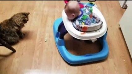 Naughty Baby and Cat Playing Together - Funny Baby and Pets Videos