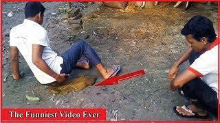 The Funniest Video Ever | Really Funny Videos | World's Funniest Videos| All In One Tv bd