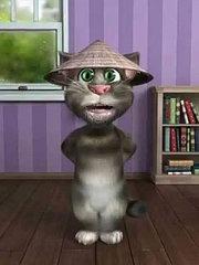 funny tom cat talking video