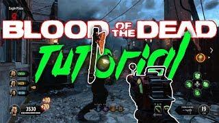 GUIDA SCUDO, PAP, TOMAHAWK BLOOD OF THE DEAD [BO4 ZOMBIE TUTORIAL ITA]