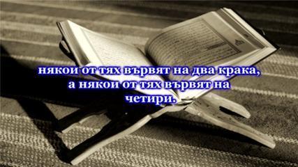 СУРА СВЕТЛИНАТА (АН-НУР) 41-45