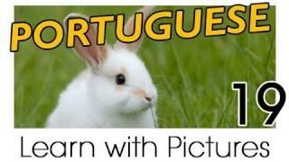 Learn Brazilian Portuguese With Pictures -- Farm Animals
