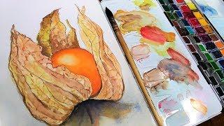 Physalis Berry Beginner Watercolor Tutorial