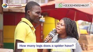 How many legs does a spider have? Street Quiz   Funny Videos