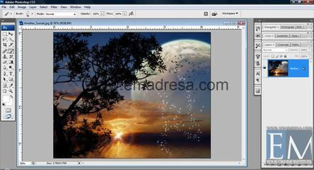 Brush Tool Basic Photoshop Tutorials In URDU, Hindi By Emadresa