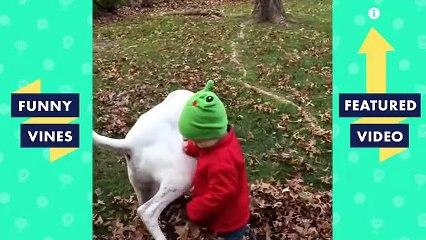 TRY NOT TO LAUGH Cute FUNNY ANIMALS Funny Videos March 2019