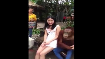 Funny Chinese videos - Prank chinese 2sda17