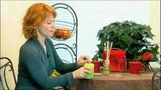 Feng Shui Design Tips : How To Use Scents In Feng Shui