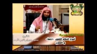 فقه اللغة العربية 21 :  المعرب