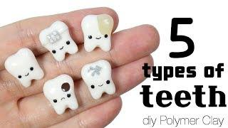 How to DIY 5 Different Teeth Variations Polymer Clay Tutorial [with some educational content]