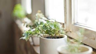 How To Feng Shui Your Home | Interior Design