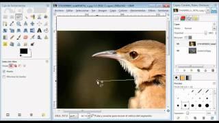 Tutorial GIMP Español Editar Imagenes - Hacer Fotomontajes-recortar Imagenes