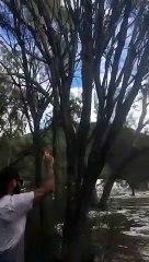 Il plante sa voiture dans la rivieure.. et se prend un arbre !