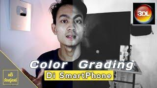 CARA COLOR GRADING & LUT Di Smartphone / TUTORIAL 3DLUT