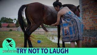 Funny indian videos - videos whatsapp - Funny Videos 2018 if you don't laugh, Just For Laugh