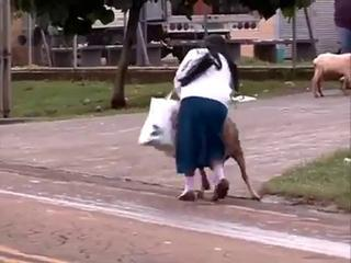 Ha Ha Ha !!! Crazy Goat Teasing A Lady - Funny